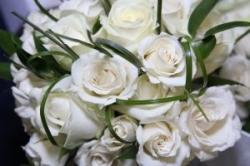 7 formas de poupar dinheiro em flores